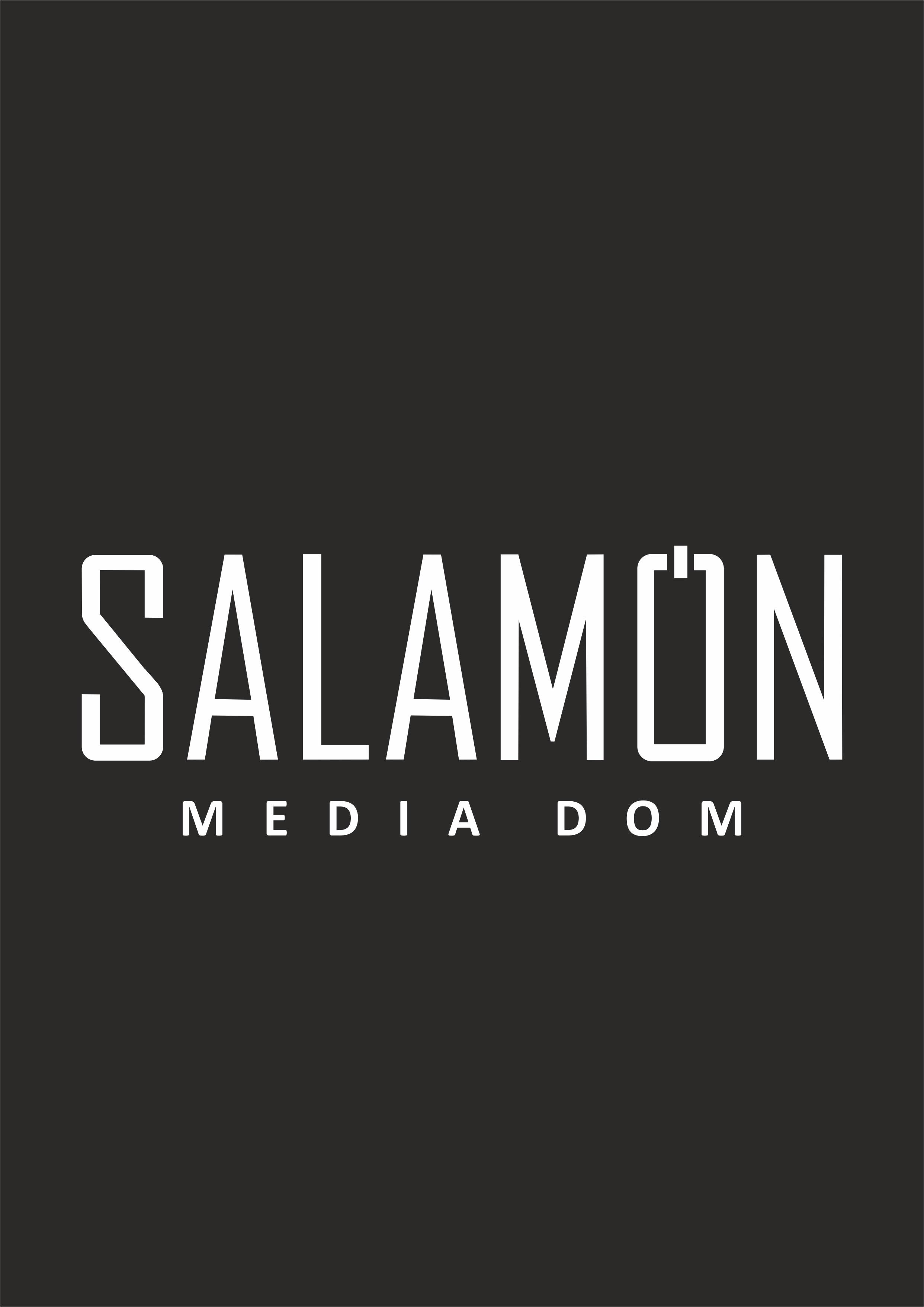 """SALAMON Media Dom"""