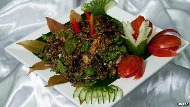 Over 2 billion people worldwide already supplement their diet with insects