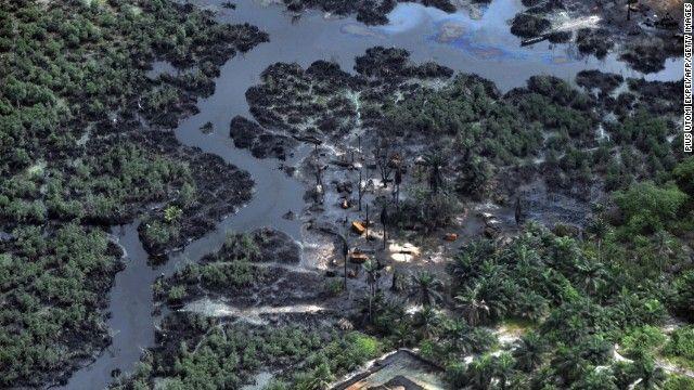 Green vegetation destroyed as a result of oil spills in Niger Delta on March 22, 2013.