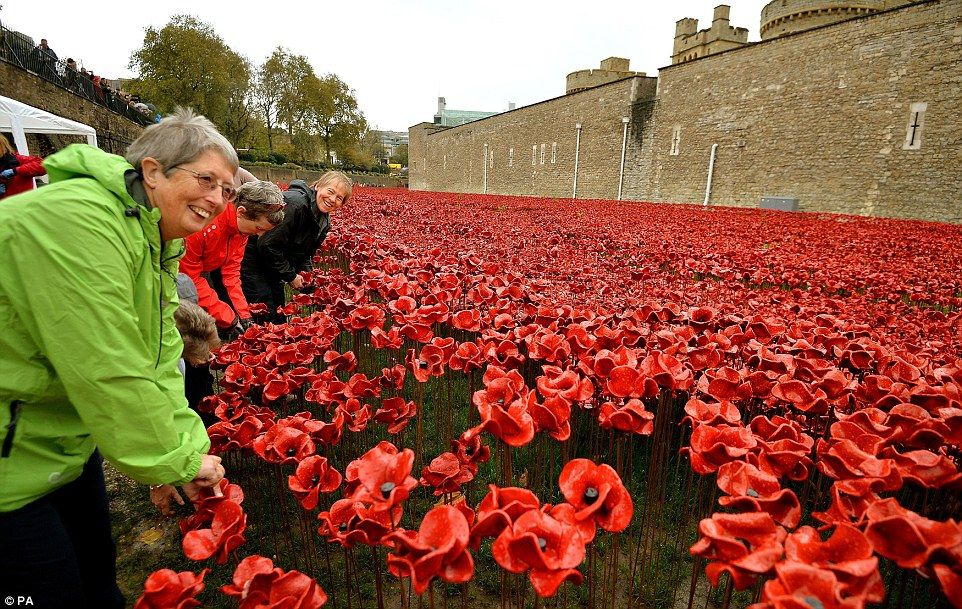 It's over: An army of volunteers has begun removing the field of ceramic Remembrance poppies