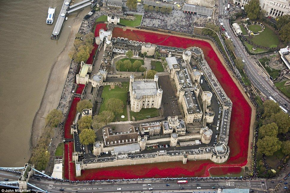 View from above: The thousands of poppies filling the moat made for a stark image  Read more: http://www.dailymail.co.uk/news/article-2831388/It-s-Hundreds-volunteers-start-removing-ceramic-poppies-Tower-London-moat-lifetime-installation-caught-nation-s-imagination.html#ixzz3IrGfrT4I  Follow us: @MailOnline on Twitter | DailyMail on Facebook