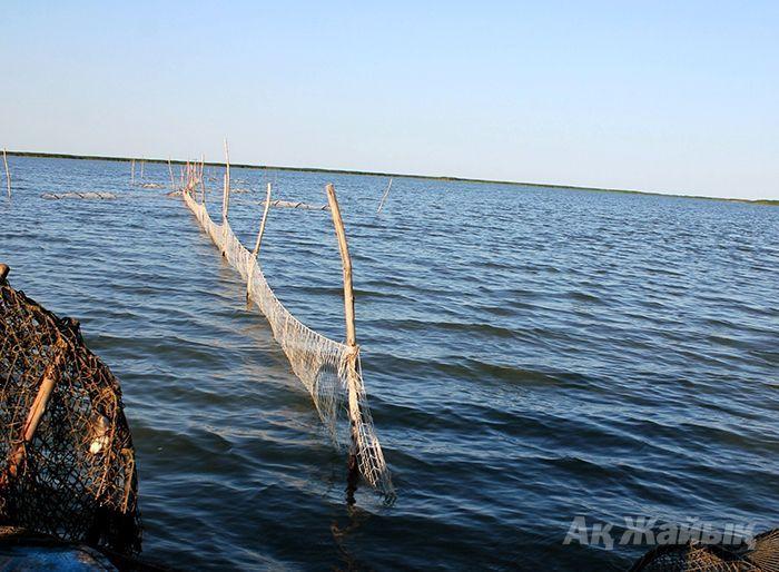 крылены рыболовные купить в новосибирске
