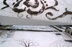 Masterpieces on snow