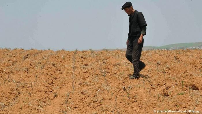 North Korea drought 'worst in a century'