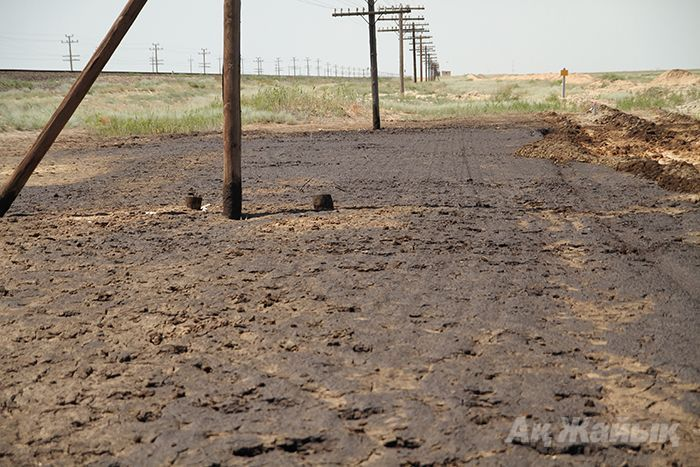 Crude oil spill stretching over a hectare discovered in steppe