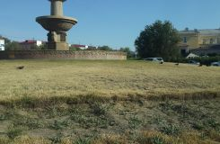 Atyrau: watering needed