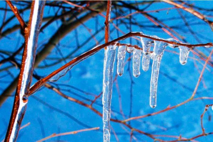 Abnormally warm weather predicted in Kazakhstan Jan 17-19