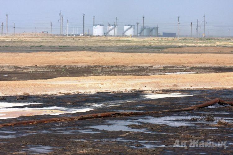 Туған жердің лайланды-ау тұнығы — новости на сайте Ак Жайык