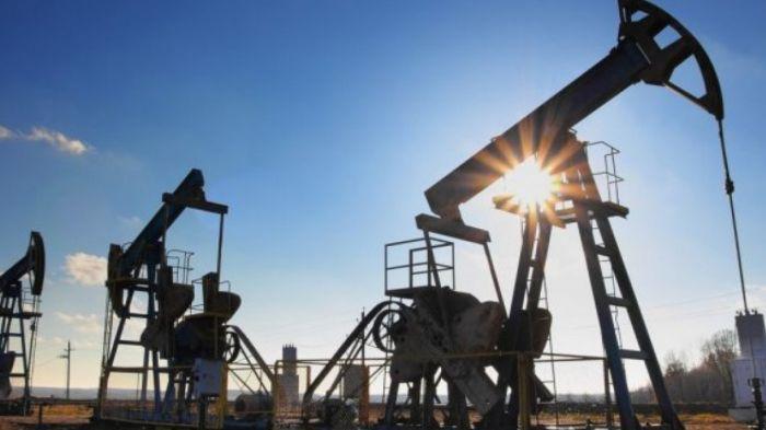 Ноғаев: ОПЕК+ келісіміне қосылудың нәтижесінде мұнай өндіру тоқтаған жоқ