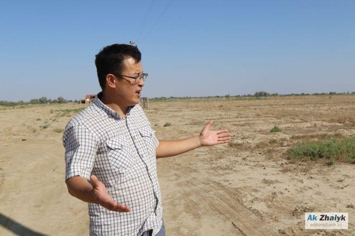 Бекіре фермасы жоқ, бірақ бюджеттің 110 миллион теңгесі «игерілді»