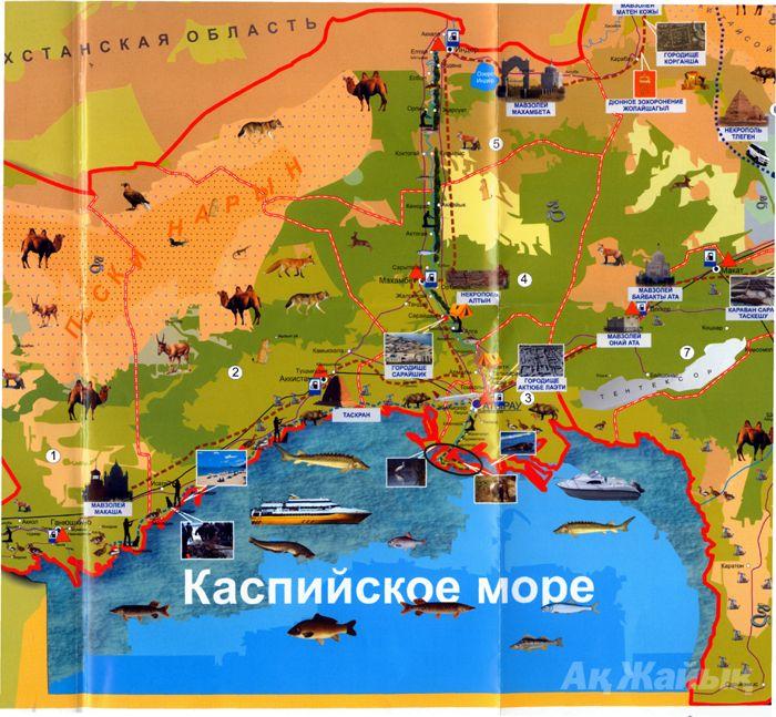 Карта в руки