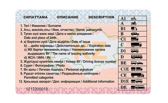 образец новых водительских прав 2015