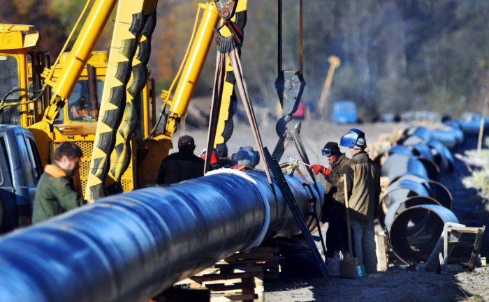 В Минэнерго рассказали, как будут разбираться с ущербом от «грязной» нефти