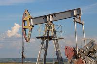 Что в нефтянке за 10 месяцев