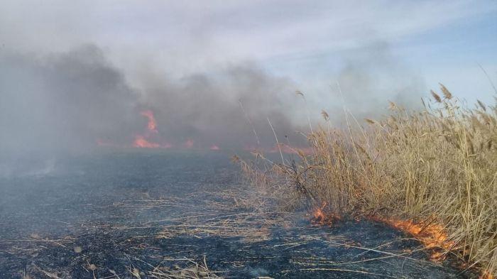 Пожар в резервате «Акжайык»