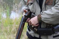 За браконьерство теперь накажут жёстко