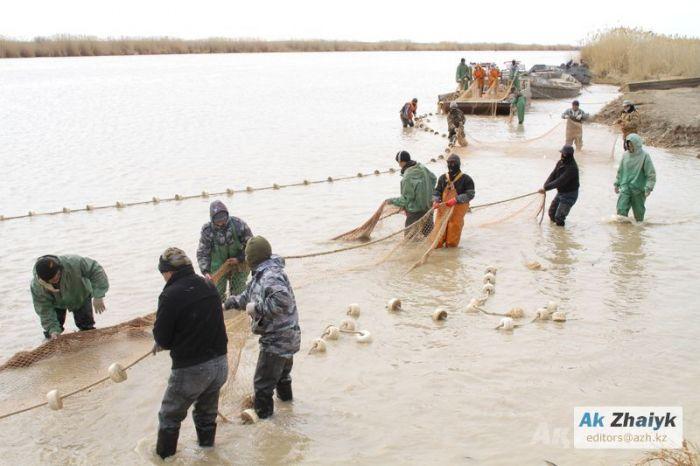 Рыбное министерство озаботилось: даёт на Урал 16 миллиардов