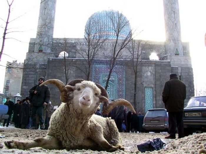 Казахстанцы отметят Курбан айт 6 ноября