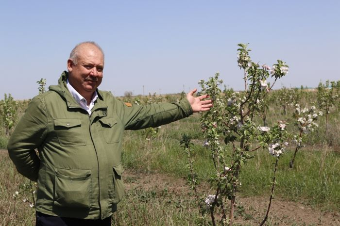 Фермер Розметов: «Агрономы в нашем регионе – исчезающий вид»