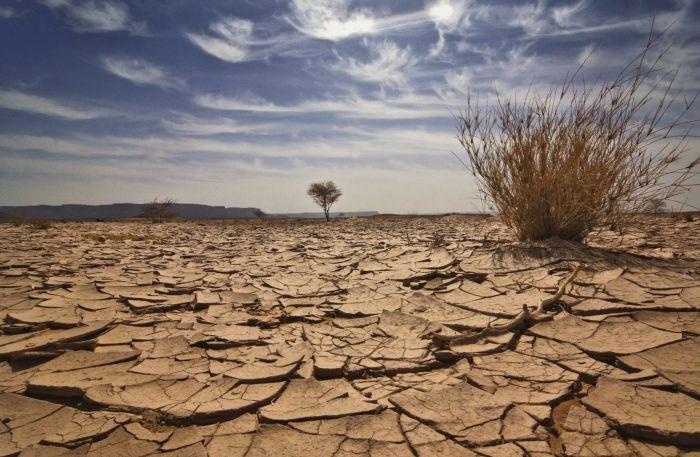 Экстремальная засуха ожидается в июле в Атырауской области