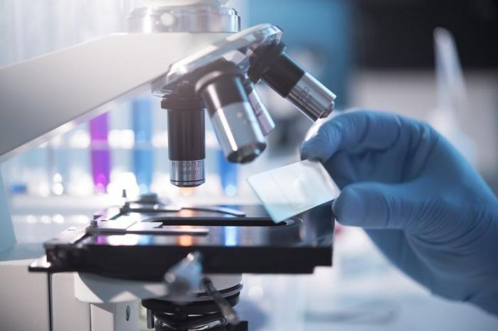 Иммунный ответ на шесть разных вакцин от коронавируса проанализировали в Нур-Султане