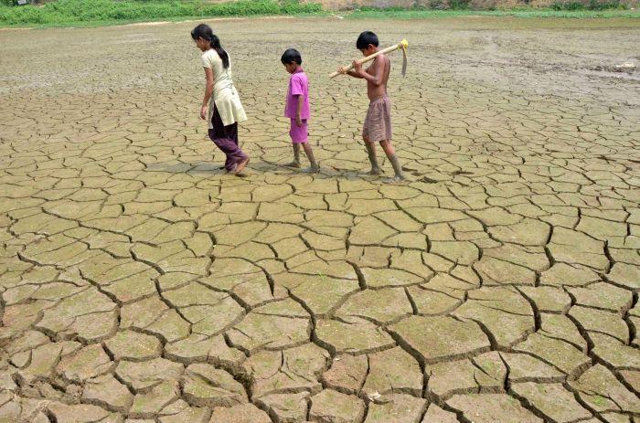 В ООН заявили об угрозе для прав человека из-за изменения климата