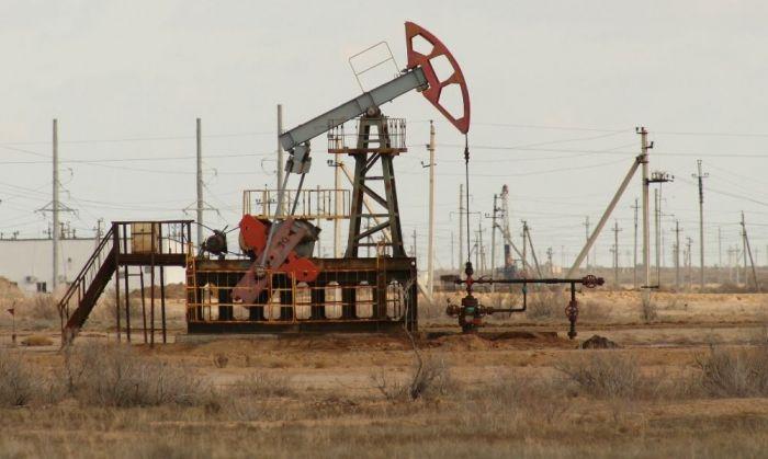 Снижение спроса на уголь, нефть и газ прогнозируют в Минэкологии