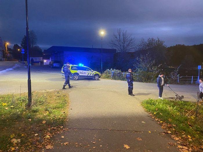 В Норвегии мужчина убил и ранил несколько человек из лука