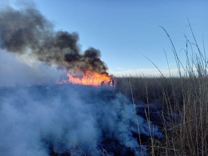 Пожар на побережье Каспия: работы по тушению продолжаются