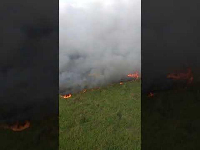 Пожар в резервате тушат вертолётом